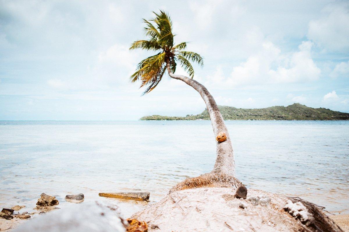 Photography | Bora Bora Wedding & Honeymoon | Tahiti